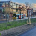 MAN Lion's City Doppeldecker [3401] der Berliner Verkehrsbetriebe