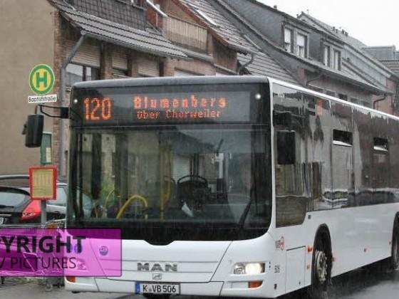 Köln | MAN | Älterer Bus